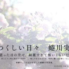 写真集「うつくしい日々/蜷川実花」5月11日発売の画像