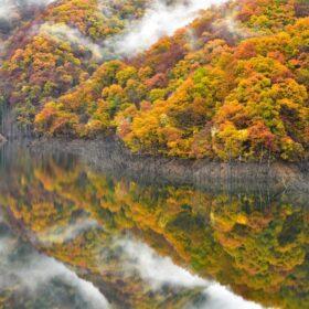 風景写真家・星野佑佳が教える『ニコン D850で撮る「錦秋の徳山湖」』10名様限定参加の特別無料撮影会を開催の画像