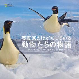 ビジュアル書籍 『写真家だけが知っている 動物たちの物語』 発売中の画像