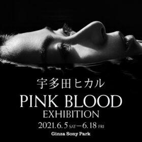 宇多田ヒカルの新曲「PINK BLOOD」の世界観がGinza Sony Parkに出現『宇多田ヒカル「PINK BLOOD」EXHIBITION』開催